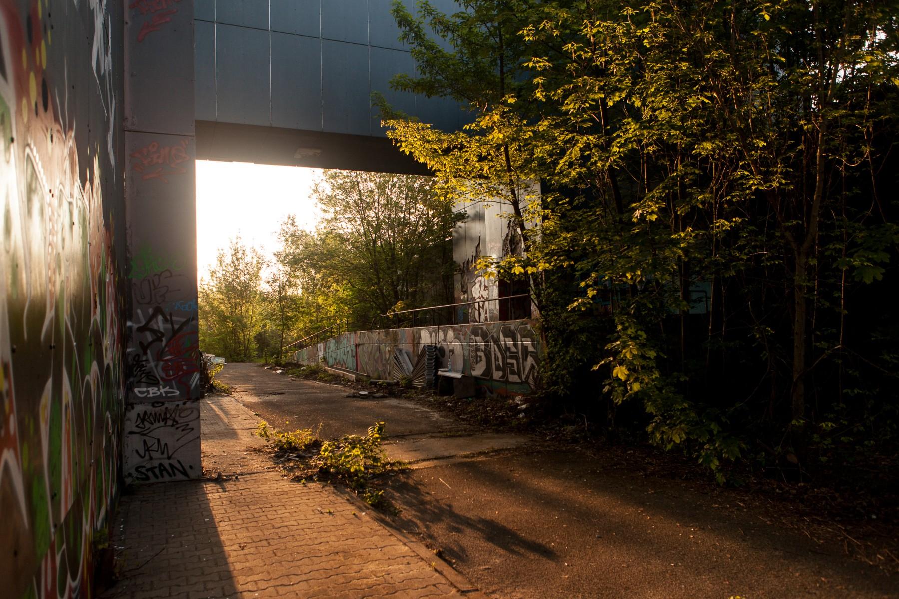 Sunrise at T-Berg