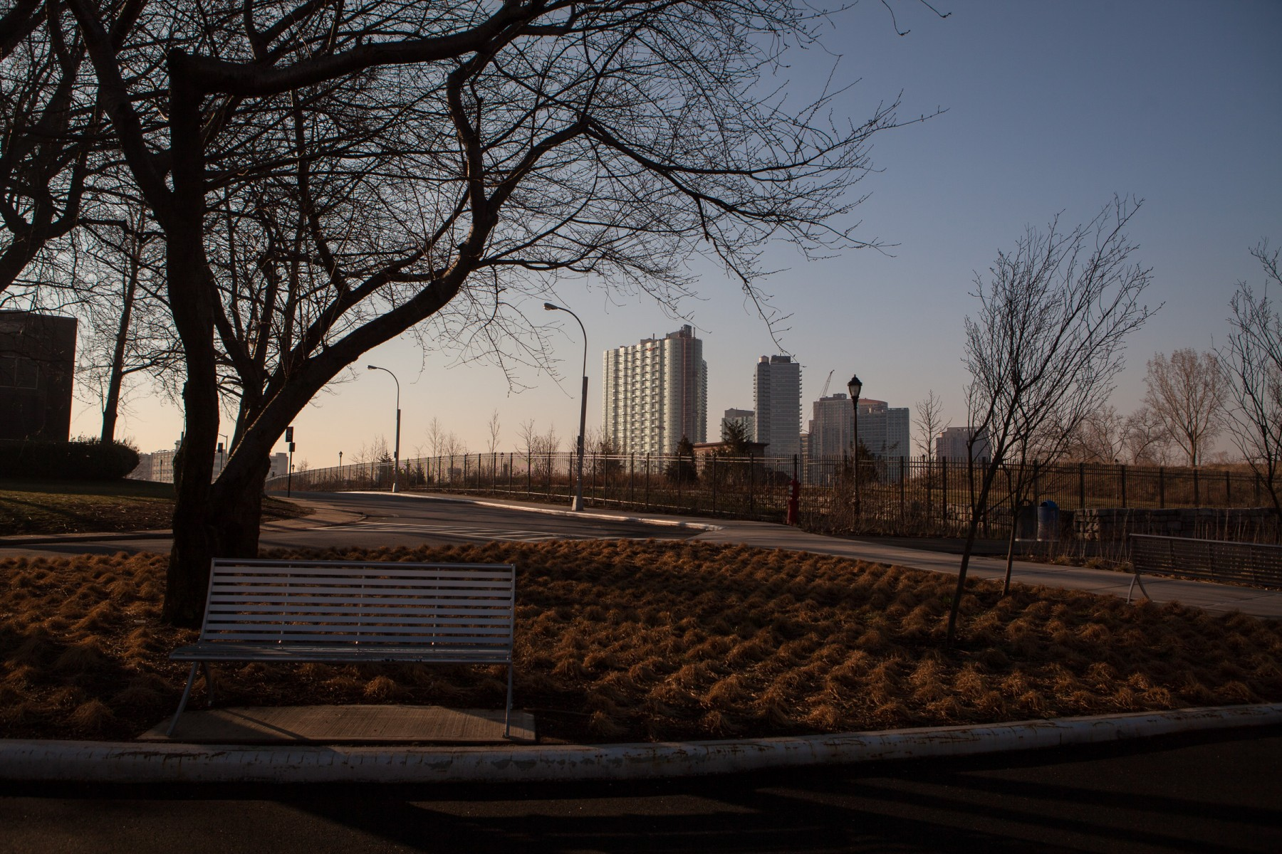 Parkland on the south side of Roosevelt Island at dawn.