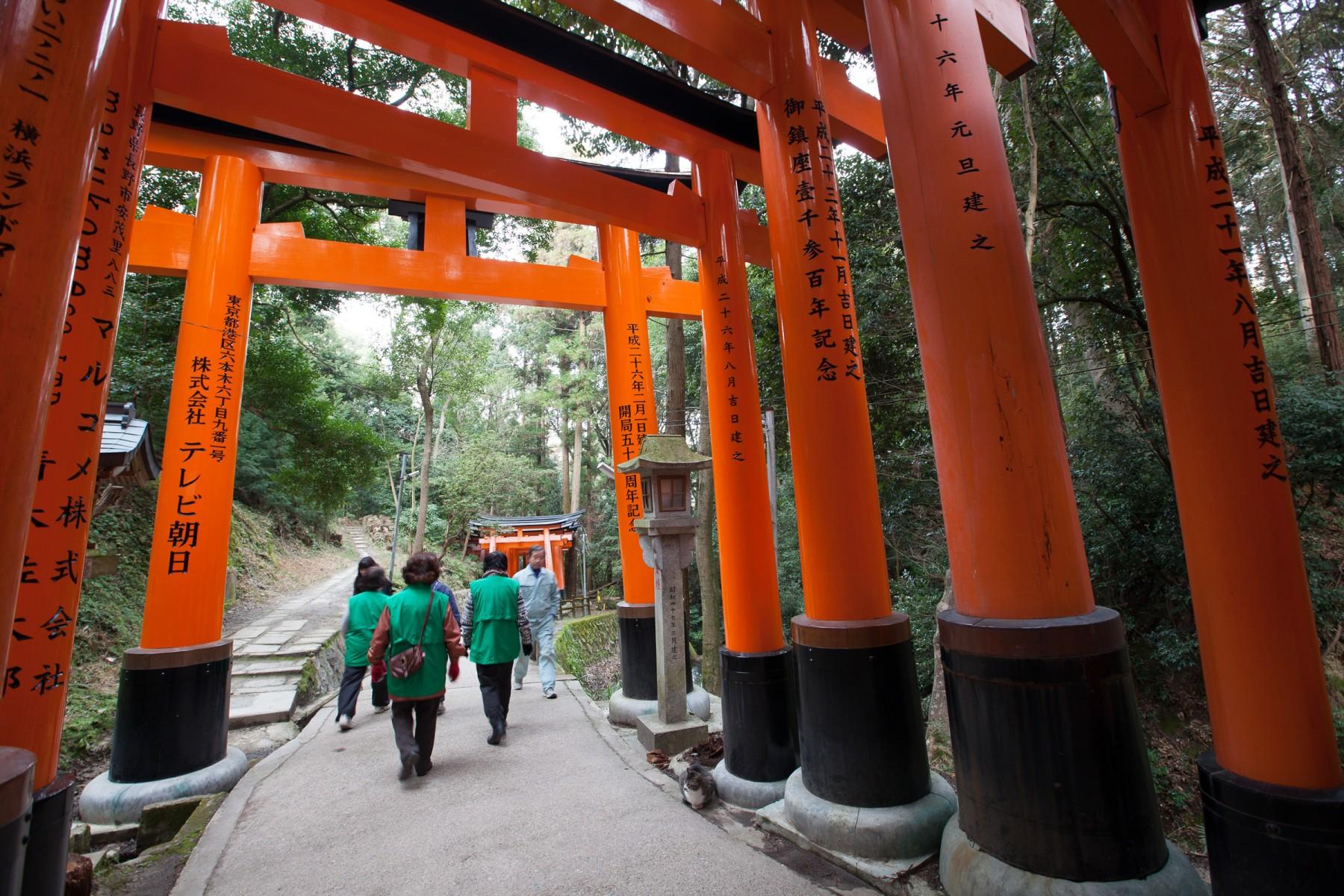 Kyoto, Japan's Spiritual Capital | Richard Pendavingh