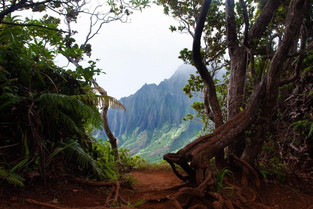 Kauai- Kalalau Lookout